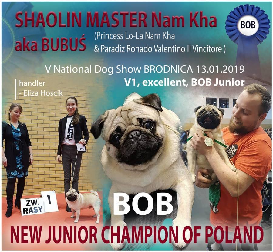 Bubuś – Młodzieżowy Champion Polski!