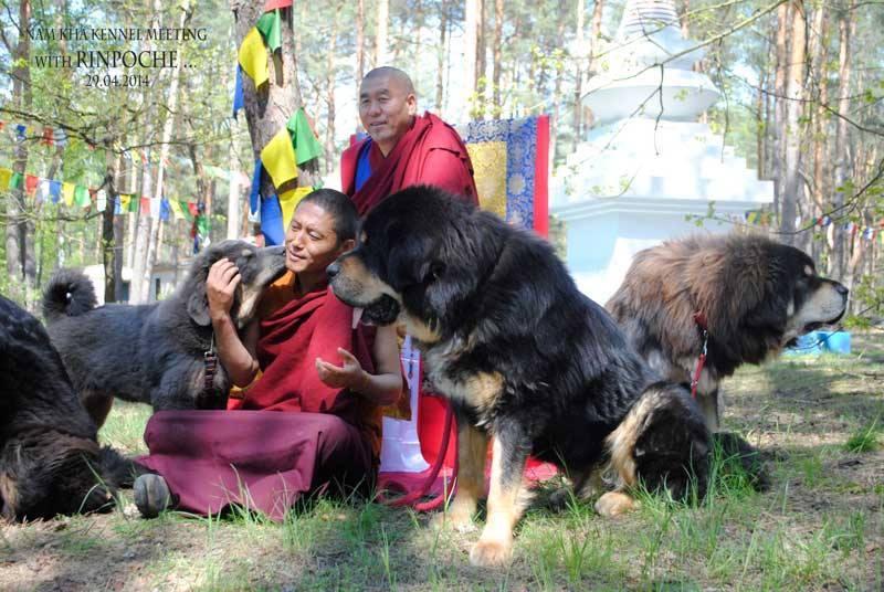 Spotkanie z Rinpocze