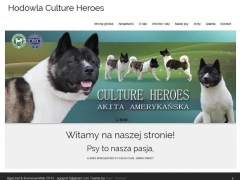 www.cultureheroes.eu