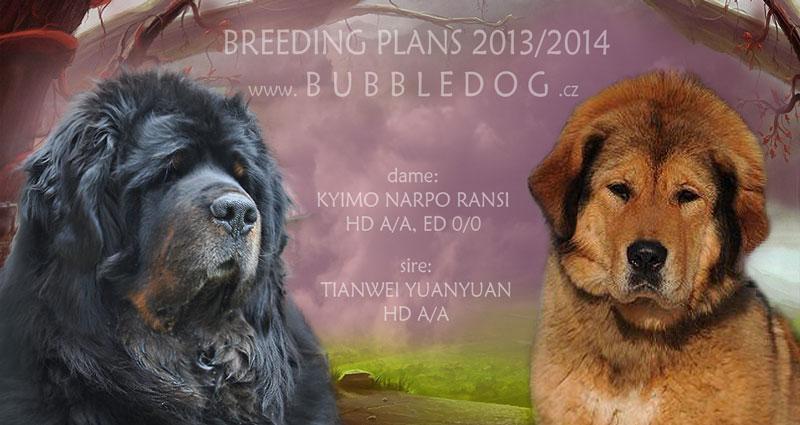 breeding_bubble
