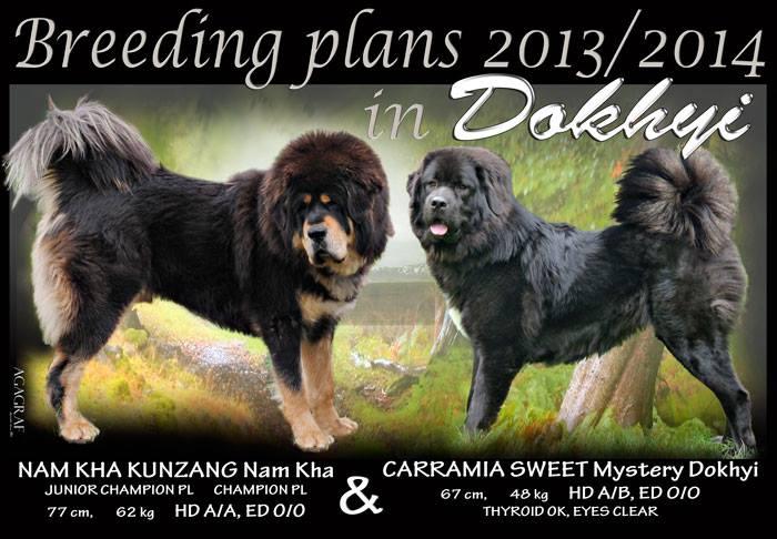 breeding_dokhyi