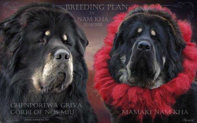 breeding_mamaki