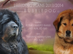 breeding_bubble