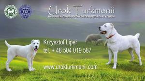 projekty_urok